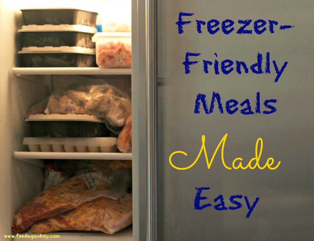 Freezer-Friendly Meals Made Easy  www.feedingaudrey.com