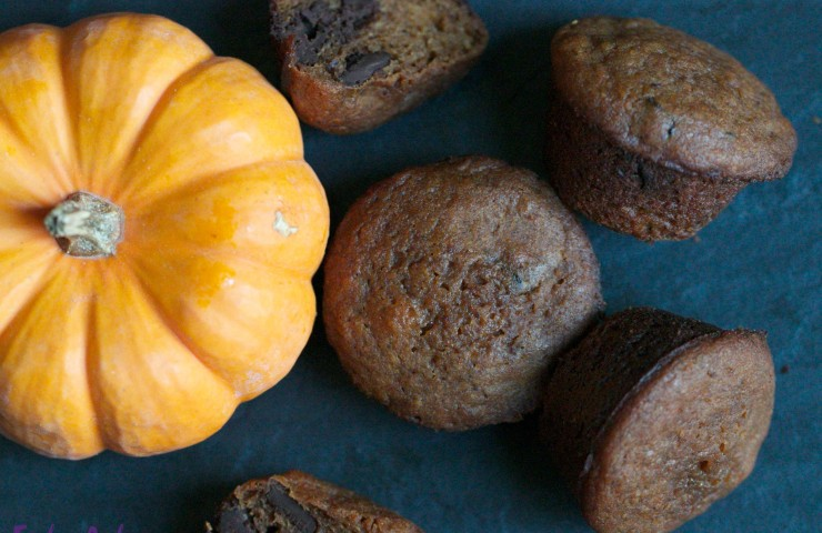 Dark Chocolate Pumpkin Muffins (with GF option)