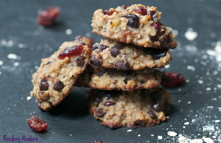 Chocolate Cranberry Chia Cookies (Flour-Free, Vegan)