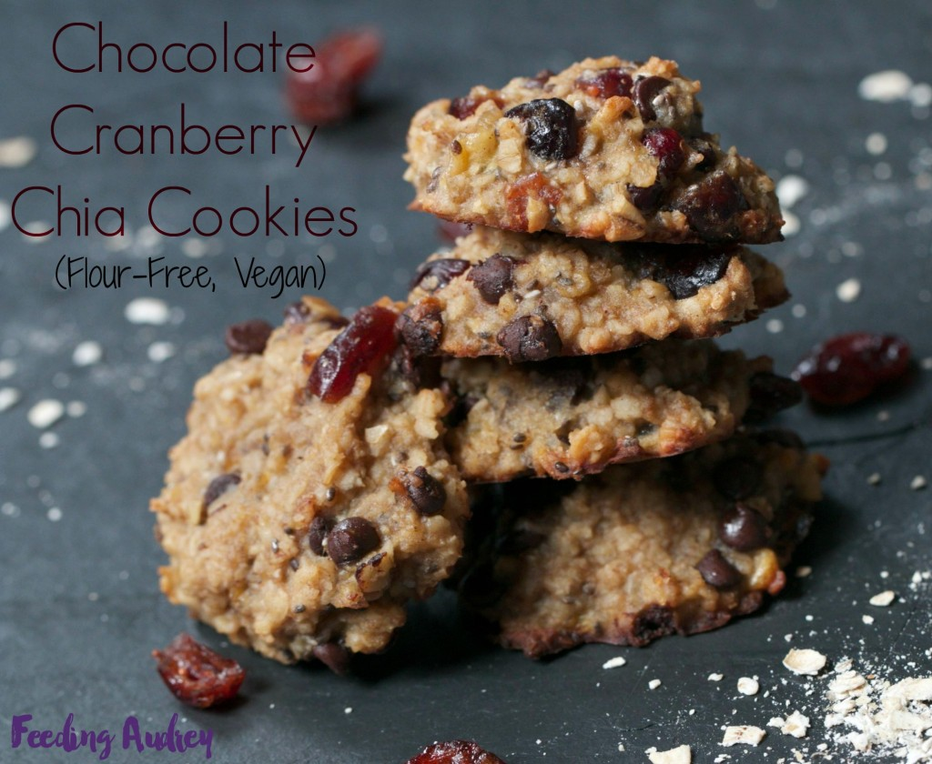 chocolate cranberry chia cookie www.redkitchenette.com